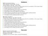 Value Based Resume Template 8 Free Basic Resume Examples Skills Based Resume Free