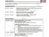 Vba Developer Sample Resume Resume Template Excel Fee Schedule Template