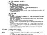 Vba Developer Sample Resume Vba Developer Resume Samples Velvet Jobs