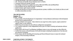 Vba Developer Sample Resume Vba Developer Resume Samples Velvet Jobs