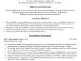 Vba Developer Sample Resume Word Resume Template topfreetorrentsites Com