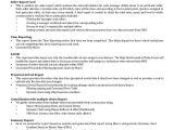 Vba Developer Sample Resume Write My Paper for Cheap In High Quality Excel Vba