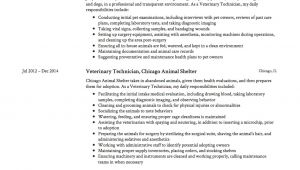 Vet Tech Student Resume Guide Veterinary Technician Resume 12 Samples Pdf