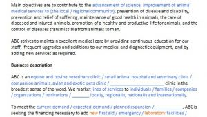 Veterinary Business Plan Template Write Your Veterinary Clinic Business Plan