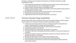 Veterinary Resume Samples Guide Veterinary Technician Resume 12 Samples Pdf