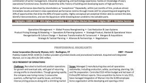 Vice President Resume Samples Example Vice President Resume for An Executive Candidate