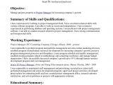 Visual Basic Resume Statement Objective Statements Sample Resume top Best Resume Cv the