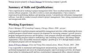 Visual Basic Resume Statement Objective Statements Sample Resume top Best Resume Cv the