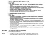 Warehouse Manager Resume Sample Director Of Operations Resume Objectives Mt Home Arts