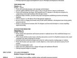 Web Designer Resume Sample Web Designer Resume Samples Velvet Jobs