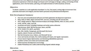 Web Developer Fresher Resume format 30 Best Developer software Engineer Resume Templates