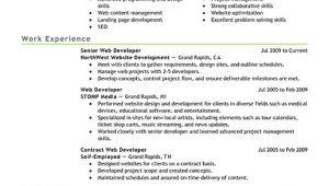 Web Developer Resume Sample Best It Web Developer Resume Example Livecareer