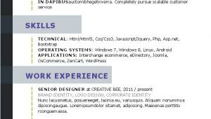 What Does A Basic Resume Look Like What Your Resume Should Look Like In 2017 Resume Styles