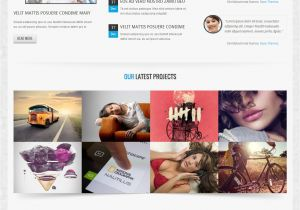 What is A Responsive Template top 10 Best Premium Joomla Responsive Templates Platina