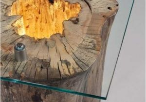 What is A Tree Trunk Covered with 4 Letters 30 Awesome What is A Tree Trunk Covered with 4 Letters