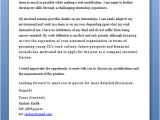 What to Write In the Cover Letter What to Write In Cover Letter