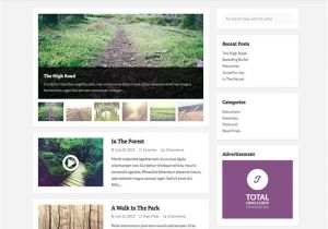 What WordPress Template is This Wptuts Free WordPress theme Wpexplorer