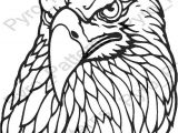 Wood Burning Templates Free Download Pyrography Wood Burning Eagle Head Bird Pattern Printable