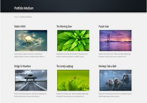 WordPress Create Blog Page Template Easily Create A Video Gallery Using WordPress Plugins