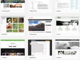 WordPress Subcategory Template WordPress Vs Wix which Platform is Best for You