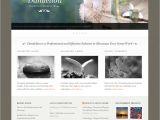 WordPress Templating Dandelion Powerful Elegant WordPress theme by Pexeto