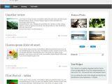 WordPress Video Blog Template WordPress Blog Template Free Download Larame