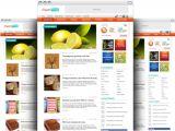 WordPress Video Blog Template WordPress Blog theme Psd Template Psd File Free Download