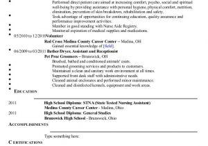 Wound Care Nurse Resume Sample Jennifer Jopek Resume 2014