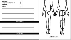 Wound Chart Template Wound assessment Past and Current Wound History