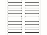 Www Avery Labels Templates Avery Hanging File Labels Template Templates Data
