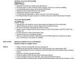 Xml Testing Resume Sample Analyst Developer Resume Samples Velvet Jobs