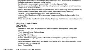 Youth Worker Resume Sample Youth Worker Resume Samples Velvet Jobs